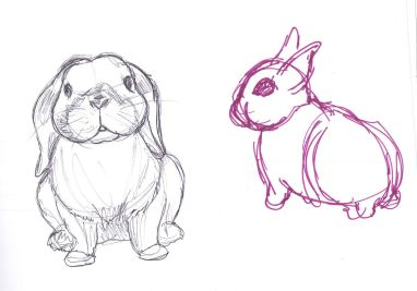 When I try to draw lops they always look like dogs or something haha