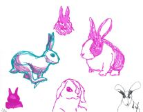 Bunnies I drew at the Wolfe's. He even tried to draw a bunny too, (His is the one in the bottom right corner in black ink)
