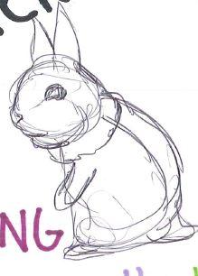 Bunny Process