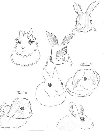 A fun doodle of the rabbits that I have lived with or have touched me in some way.